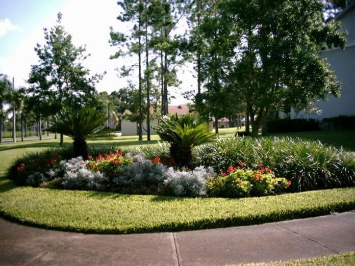 Trees ... - Landscaping Design Florida Landscaping Today