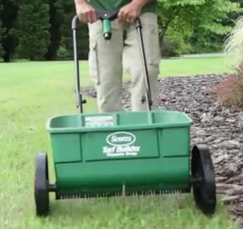 Fertilizing St  Augustine Grass | Florida Landscaping Today